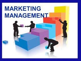 Best college Marketing Management program