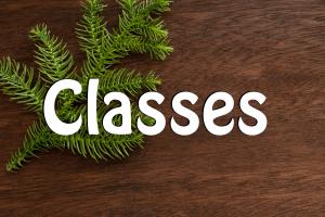 Michaels Classes